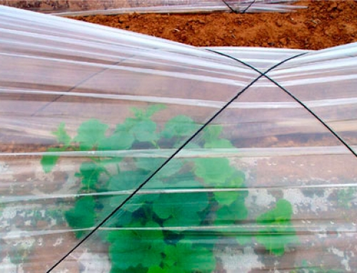 Utilización del plástico en agricultura