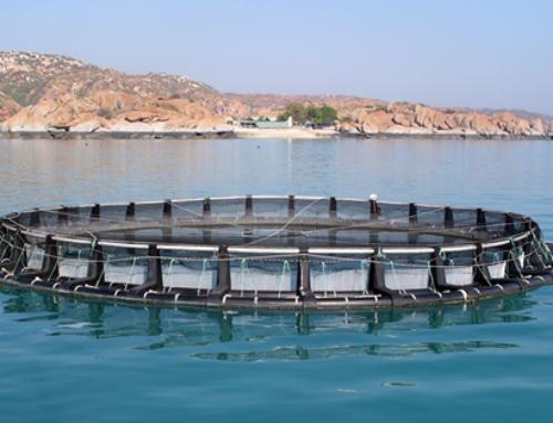 Polietileno de alta densidad (HDPE) en la construcción de piscifactorías